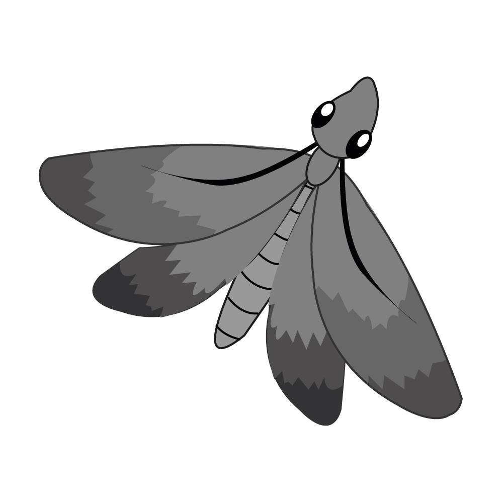 Motten bekämpfen - Fachgerechte Umsiedlung und Entfernung von Motten